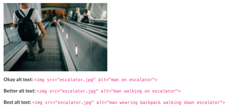 Example of good image alt text from Moz.
