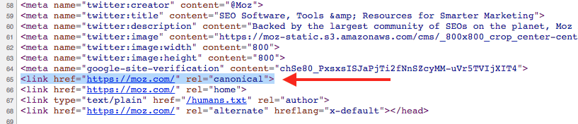 Example of a canonical tag used to create an SEO PDF