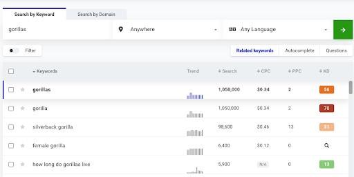 Keyword research dashboard for SEO copywriting.