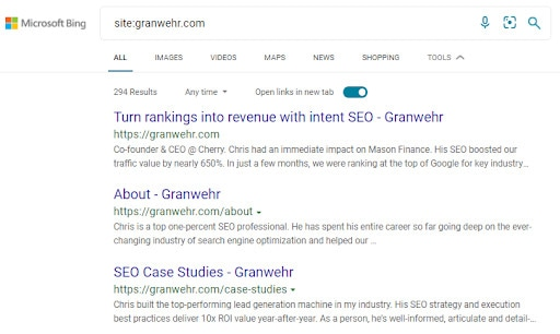 An example of a SERP for a Bing site search.
