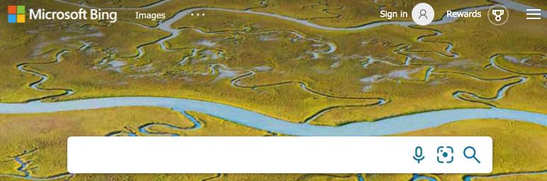 Screenshot of the Bing search bar.