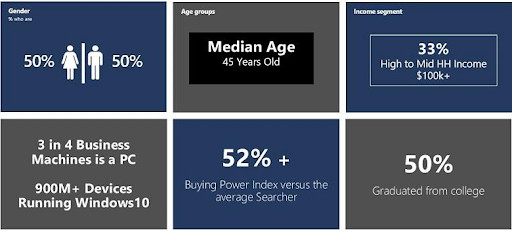 Chart showing the target audience demographics of Bing search engine users..