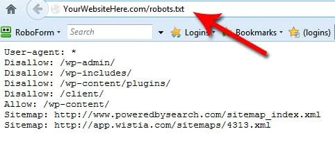 An example of a robots.txt file.